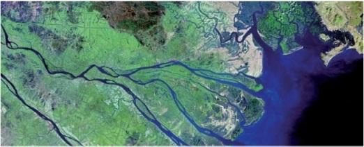 Delta Sungai Mekong-Vietnam